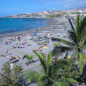 Playa Torviscas